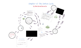 Chapter 4.2 The Carbon Cycle