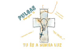 PULGAS MARGEM 2013