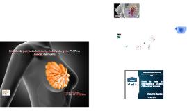 Estudo da perda da heterozigozidade do gene FHIT no câncer d