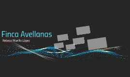 Finca Avellanas
