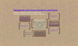 Planeación del capital humano. Demanda del capital humano