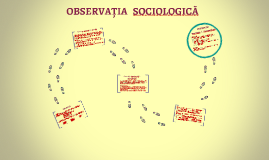OBSERVAȚIA SOCIOLOGICĂ