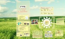 Copy of 4th Wheel BNI Presentation
