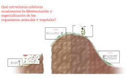 Qué estructuras celulares ocasionaron la diferenciación y es
