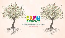 EXPO AMBIENTE