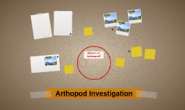 Arthopod Investigation