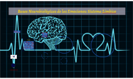 Bases neurobiológicas de las emociones