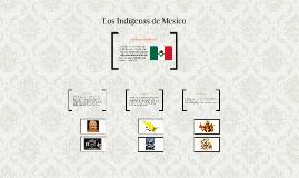 Los Indigenas de Mexico