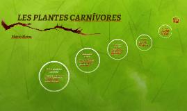 LES PLANTES CARNÍVORES