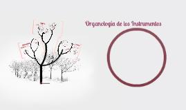 Organología de los Instrumentos