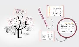 Copy of Presupuesto Flexible