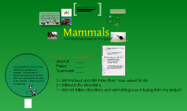 Mammals Webquest