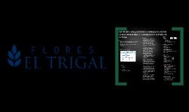 P03 Diseño e implementación de programa de gestión de ideas innovadoras y de mejoramiento continuo de El Trigal