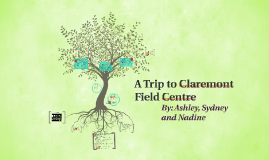 A Trip to Claremont Field Centre