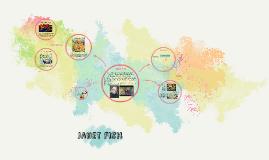 Janet Fish - Art 20