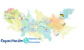Copy of Capacitación en materia de Publicidad