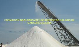 FORMACION GEOLOGICA DE LOS DEPOSITOS SALINOS