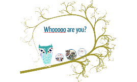 Whoooo are you? Get to know your teacher