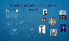 Copy of Columna de platos (absorción de gases)