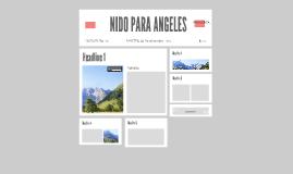 NIDO PARA ANGELES