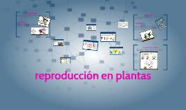 reproducción en plantas y animales