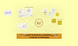 Instrumentos Cuantitativos y Cualitativos