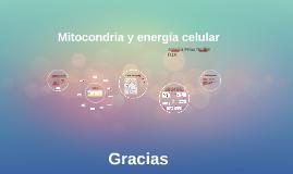 Mitocondria y energía celular