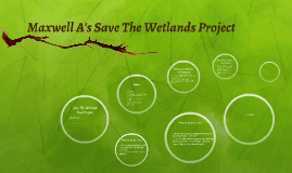 Save The Wetlands Final Project