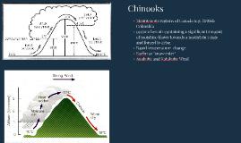 Chinooks