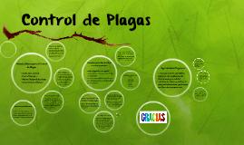 Copy of Plaguicidas y Control de Plagas