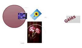 Copy of gėlės