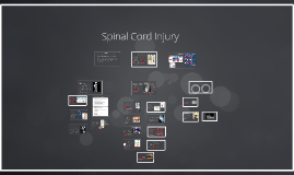 Copy of Spinal Cord Injury