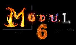 Copy of Modul 6: lektion 1, 2 und 3