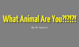 What Animal Are You?!