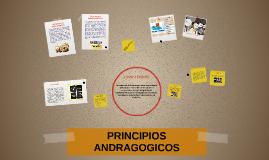 Copy of PRINCIPIOS DE LA ANDRAGÓGIA