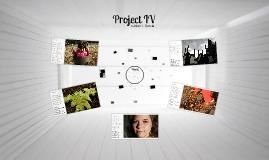Project IV