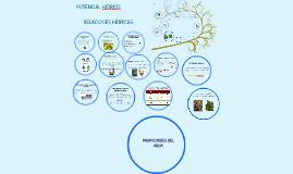 POTENCIAL HIDRICO 2015-2
