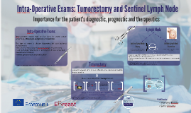 Tumorectomy, sentinel lymph node and intra-operative exams