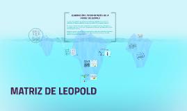 ELABORACIÓN E INTERPRETACIÓN DE LA  MATRIZ  DE LEOPOLD