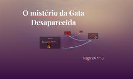 O mistério da Gata Desaparecida