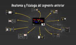 Copy of Anatomía y Fisilogía del segmento anterior