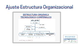 Ajuste Estructura Organizacional