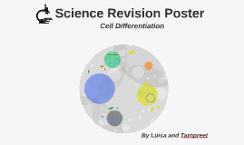 Science Revision Poster