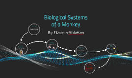 Biological Systems