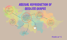 Asexual propagation disadvantages of internet