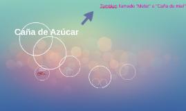 Caña de Azucar