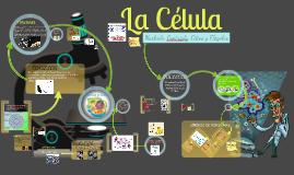 nucléolo, centríolo, cilios y flagelos
