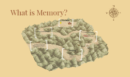 What is Memory?