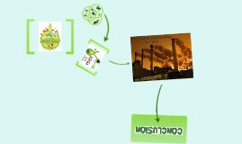 Low Impact Building Materials