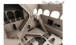 Perception Project